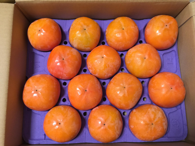200株以上必要 レシップホールディングスからの株主優待 岐阜県特産の富有柿1箱