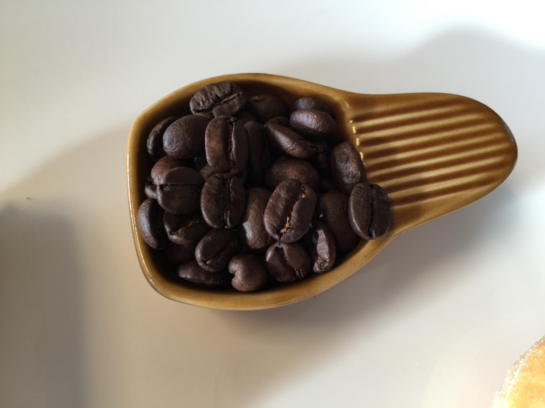 ふるさと納税 福智町より世界一の焙煎士が手がけた豆香洞 福智ブレンド珈琲豆