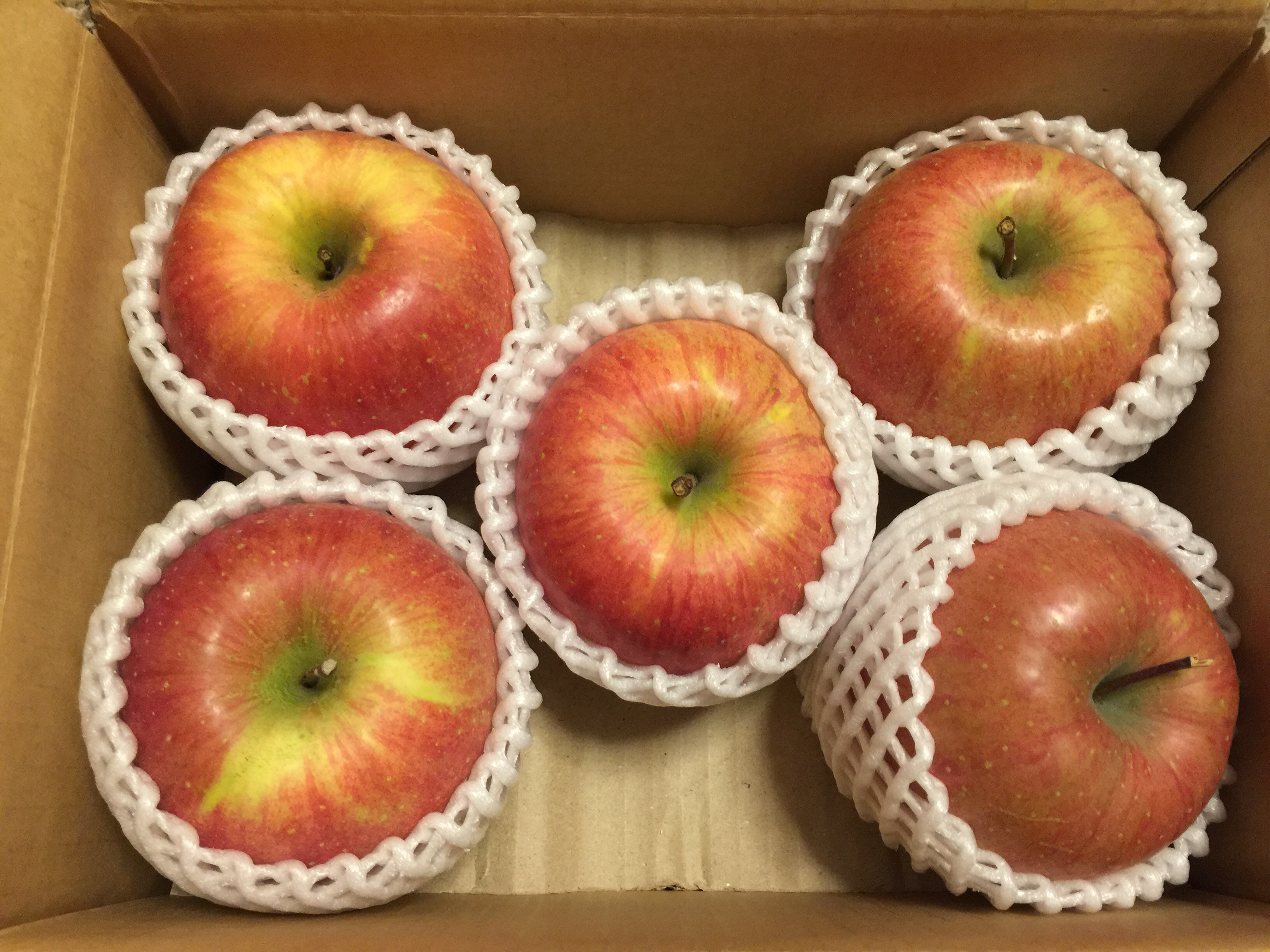 イーサポートリンクの株主優待 青森県産の葉とらずりんご1.8キロ