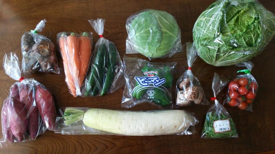 4,000円のふるさと納税で、奈半利町から「旬の野菜セット」をいただきました
