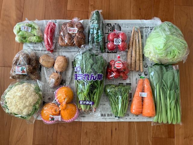 八代市にふるさと納税 生産者直売所よりお届け!おまかせ旬のお野菜・果物セット!