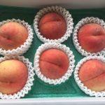 ヒューリックの株主優待 3,000円相当のカタログギフト 果物選んでます