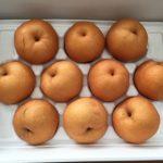 長洲町にふるさと納税 熊本県産 新興梨を5キロもいただきました