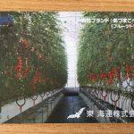 2万円台で購入できる株主優待銘柄 東海運(あづまかいうん)からのクオカード